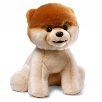 Gund Toy Boo (dog) Review and Giveaway!