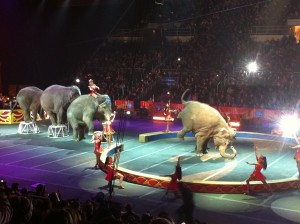 photo 11 300x224 Ringling Bros. and Barnum & Bailey Circus Presents Dragons Review