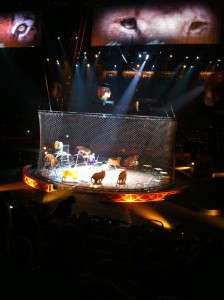 photo 4 224x300 Ringling Bros. and Barnum & Bailey Circus Presents Dragons Review