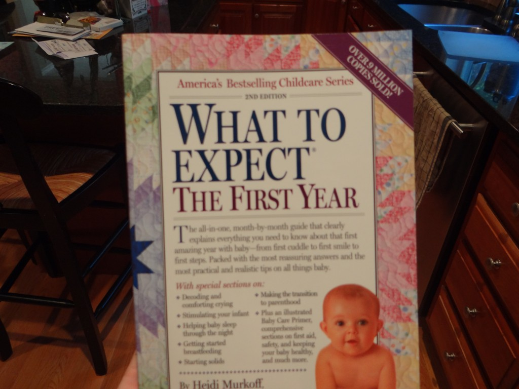 DSC06980 1024x768 What to Expect When Youre Expecting (3 book series) Pregnancy+1st/2nd Years Review Giveaway!