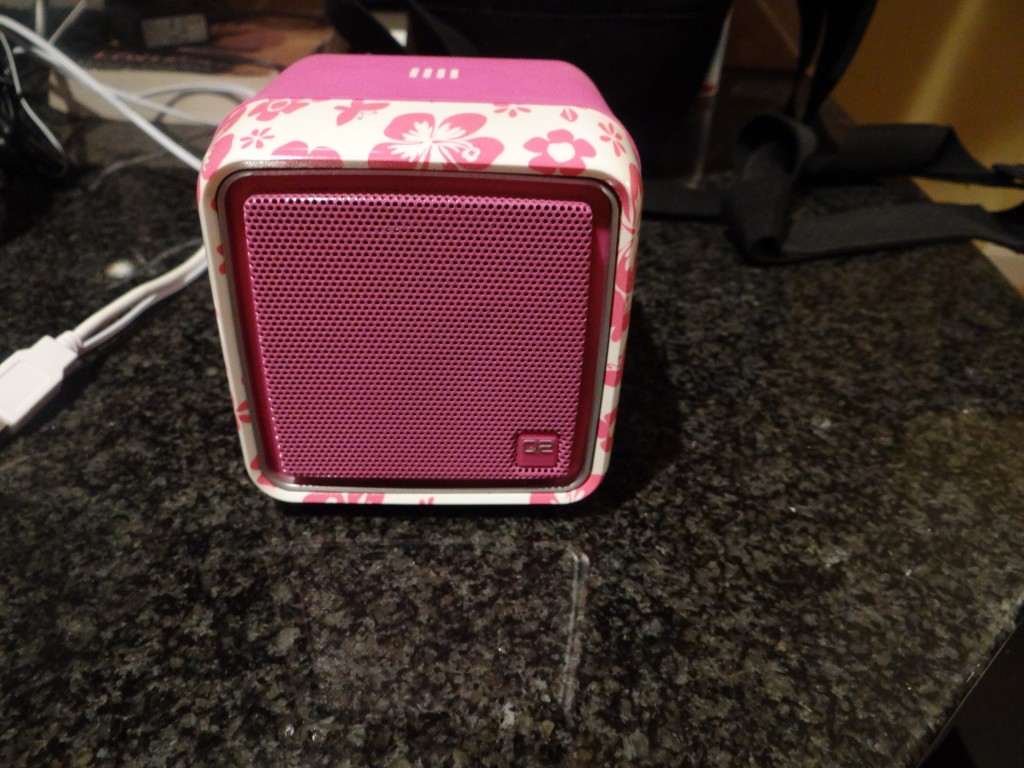 DSC07564 1024x768 Q2 Wi Fi Internet Radio Review!