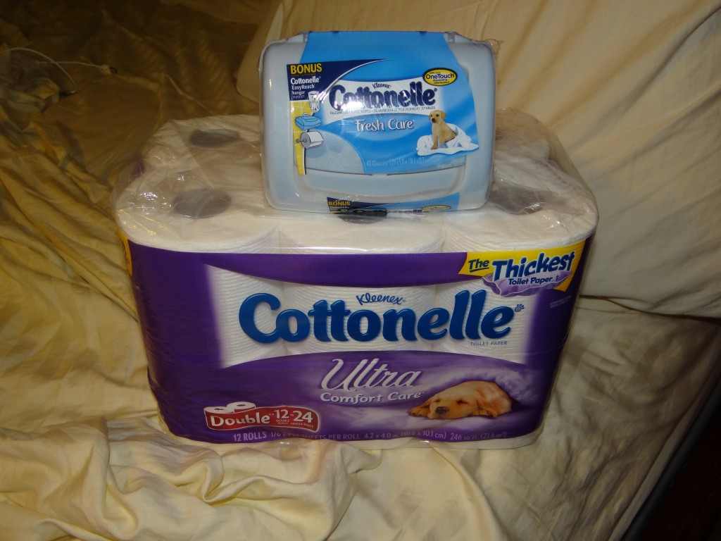 DSC07851 1024x768 Cottonelle Care Routine and final submissions for the Cottonelle Name It Contest!