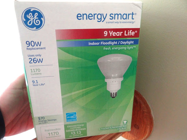 DSC00516 GE Lighting Sustainability Reduce, Recycle, Reuse #GELighting #cbias