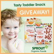 3425 Sprout Toddler Snacks Review and a Sprout Giveaway! #SproutFoods