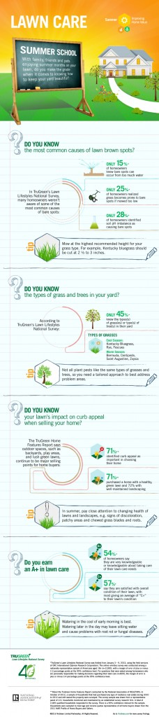 TruGreen Infographic Summer School Final resize 1 copy 228x1024 Getting My Grass Green This Fall with TruGreen!  #TruGreen