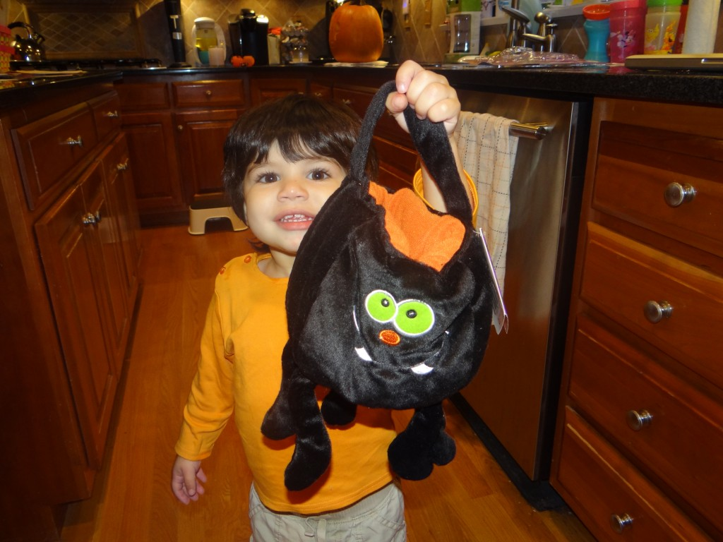DSC04928 1024x768 One Step Ahead Spider Halloween Trick or Treat Bag Review Giveaway!