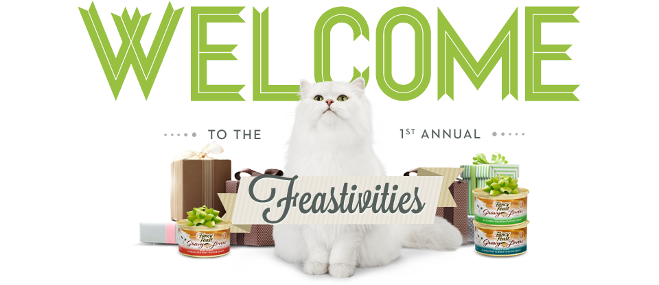 welcome top Gift Ideas and Shopping Tips for Cat and Cat Owners!