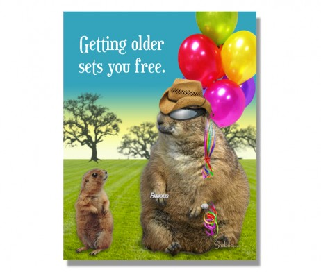 Aging Sets You Free 462x392 Shaboo Prints  A boutique greeting card company!