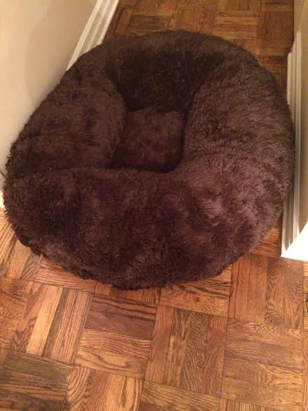 unnamed 3 Baylee Nasco Pet Bed Review and Giveaway! #BayleeNasco
