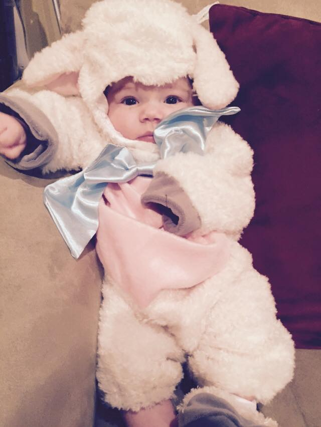 1798135 10152733918124356 547657745788015192 n Celebrating Taylors Halloween and a $75 Babies R Us/Pampers Giveaway!