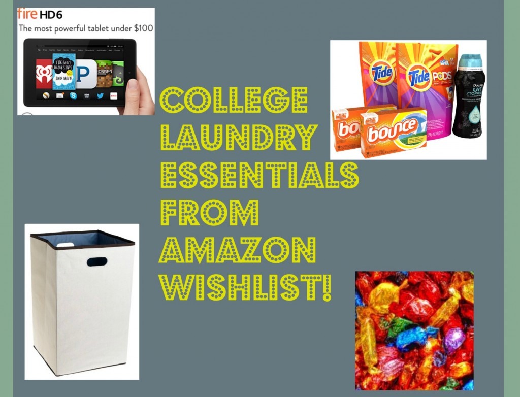 81QhZkqrEUL. SL1500  1024x782 Creating the Perfect College Laundry Care Package with Amazon Wish List!