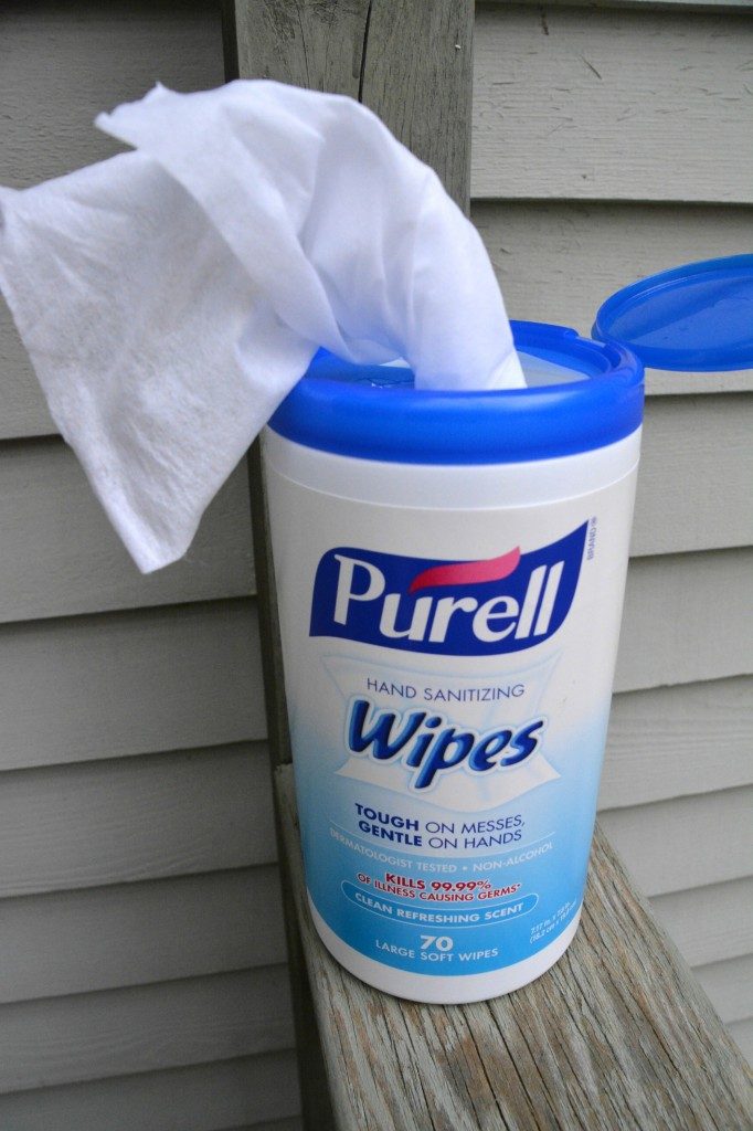 DSC 09381 682x1024 Getting Through All the Tough Messes Thanks to PURELL® Hand Sanitizing Wipes!