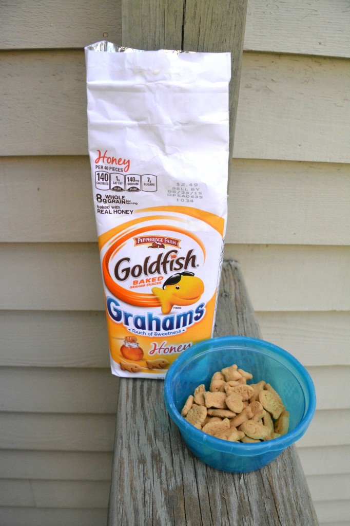 DSC 1017 682x1024 Goldfish® Grahams are a Fun and Delicious Snack!