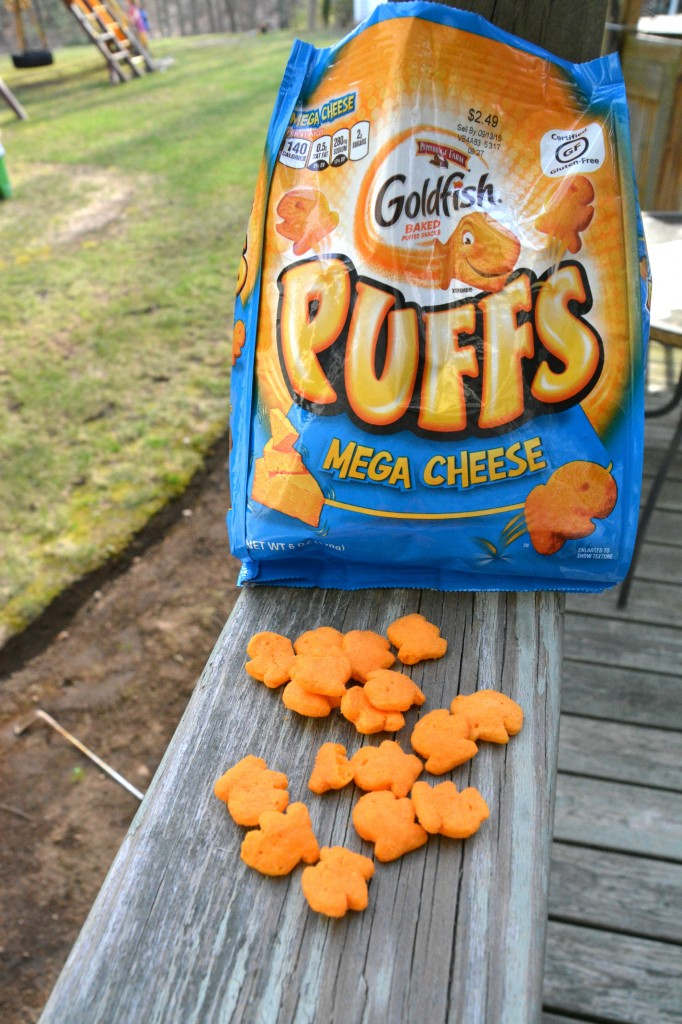DSC 09382 682x1024 Goldfish® Puffs Mega Cheese are a snack that parents and kids love!!