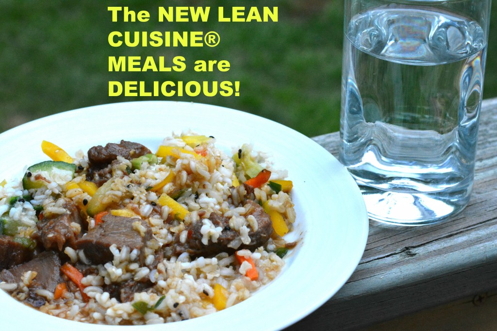 DSC 1145 1024x682 Lean Cuisine Helps Make This Mamas Life Easier!!