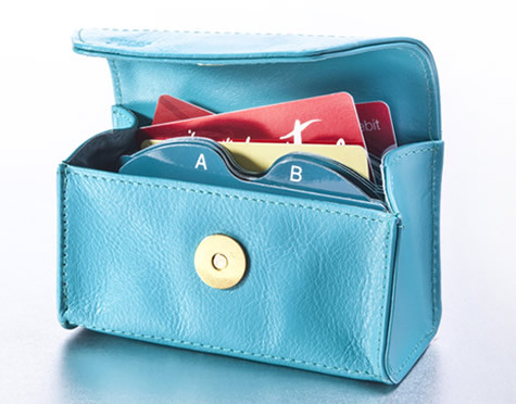 turk 1 Card Cubby (a place to put all your cards in one location/pocketbook) Review and Giveaway!