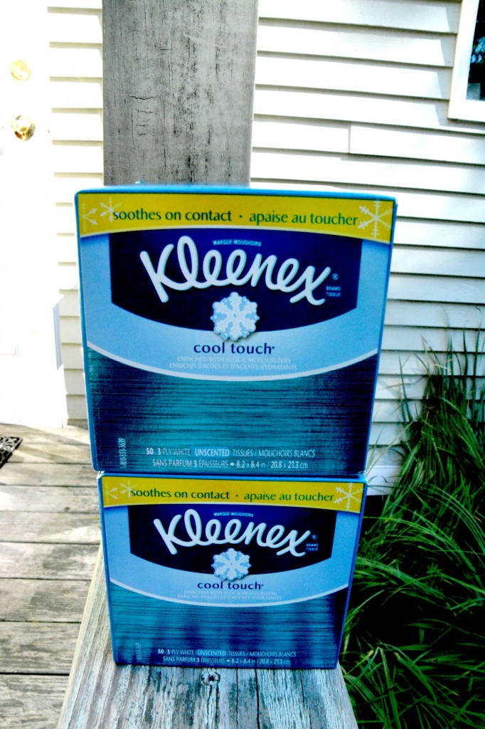 DSC 0386 682x1024 How Kleenex Got Me Through Those Very Special and Personal Occasions!