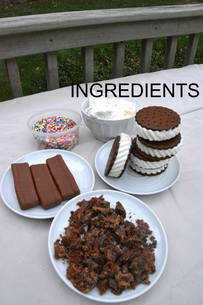 DSC 0475 682x1024 Delicious and Easy Ice Cream Cake Recipe…Weight Watchers Friendly!!