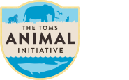 1 Logo TAI 185x115 TOMS and National Geographic Big Cats Collection!
