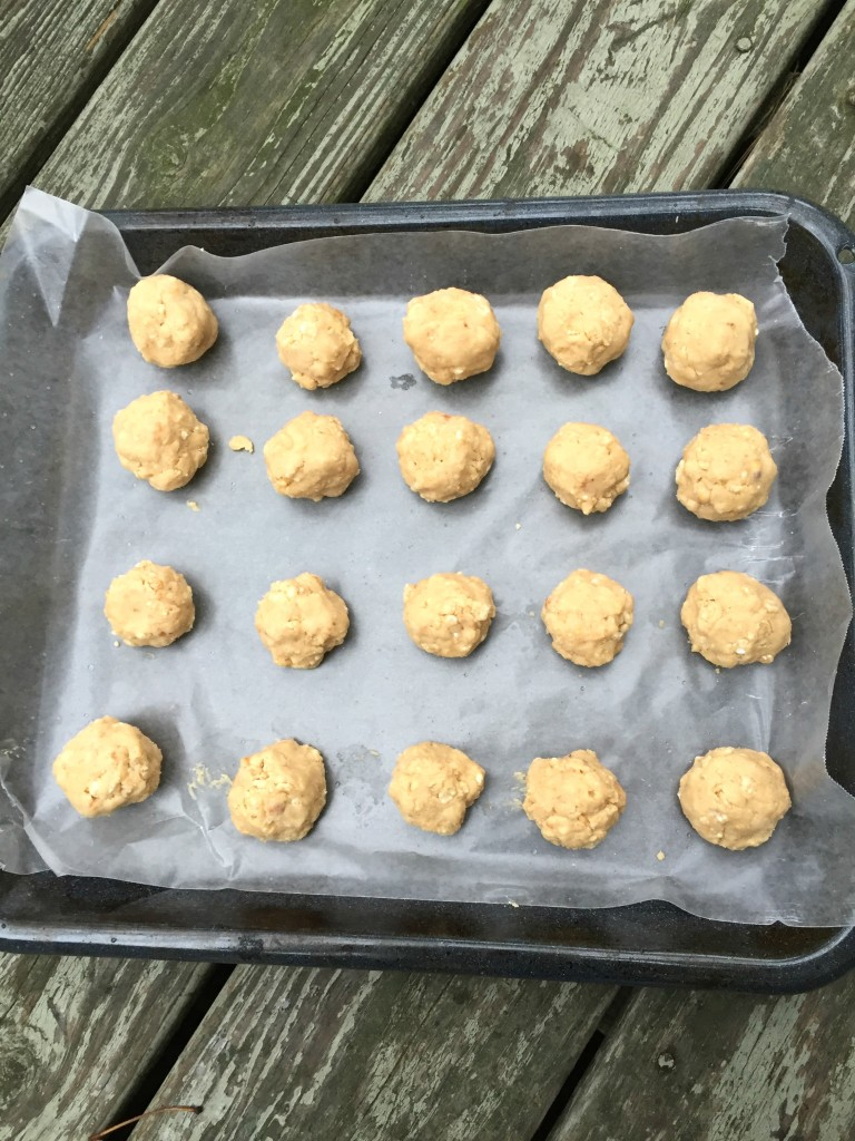 IMG 7469 768x1024 The MOST AWESOME Peanut Ball Recipe for the Holidays!