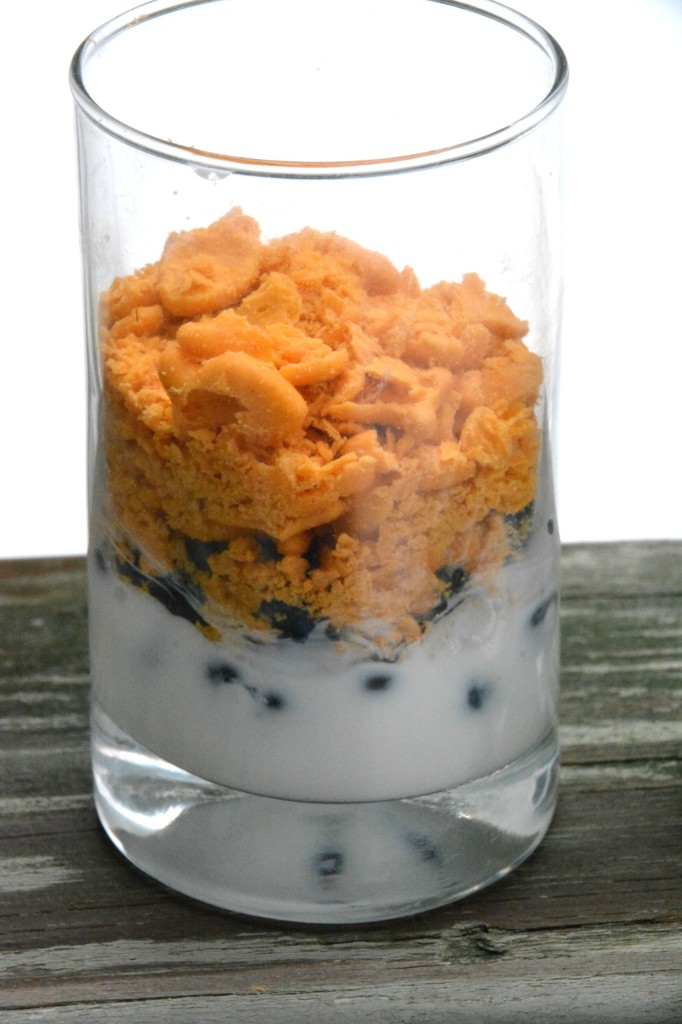 DSC 0794 682x1024 A Delicious Goldfish® Crackers Yogurt Parfait Recipe!