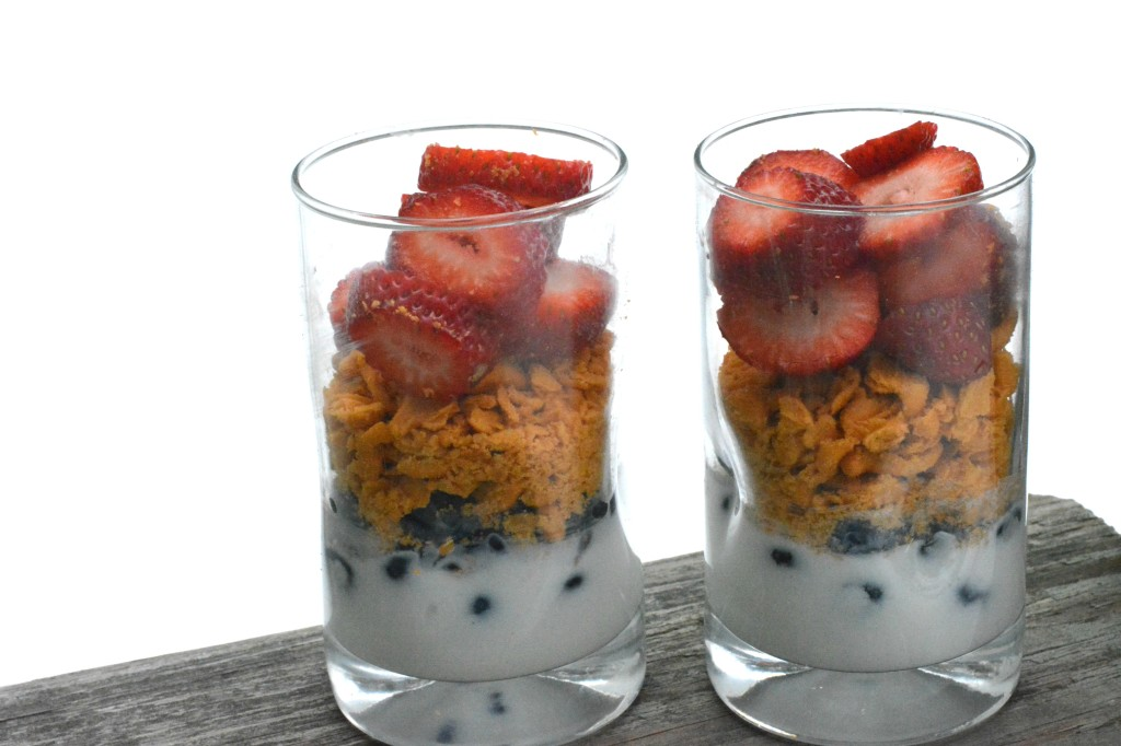 DSC 0805 1024x682 A Delicious Goldfish® Crackers Yogurt Parfait Recipe!