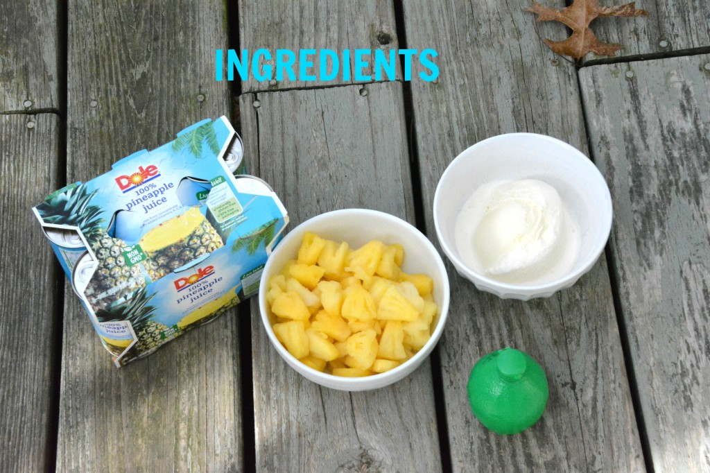 DSC 0975 1024x682 Mock Dole Whip Recipe! Try it For Your #DisneyKids Party!
