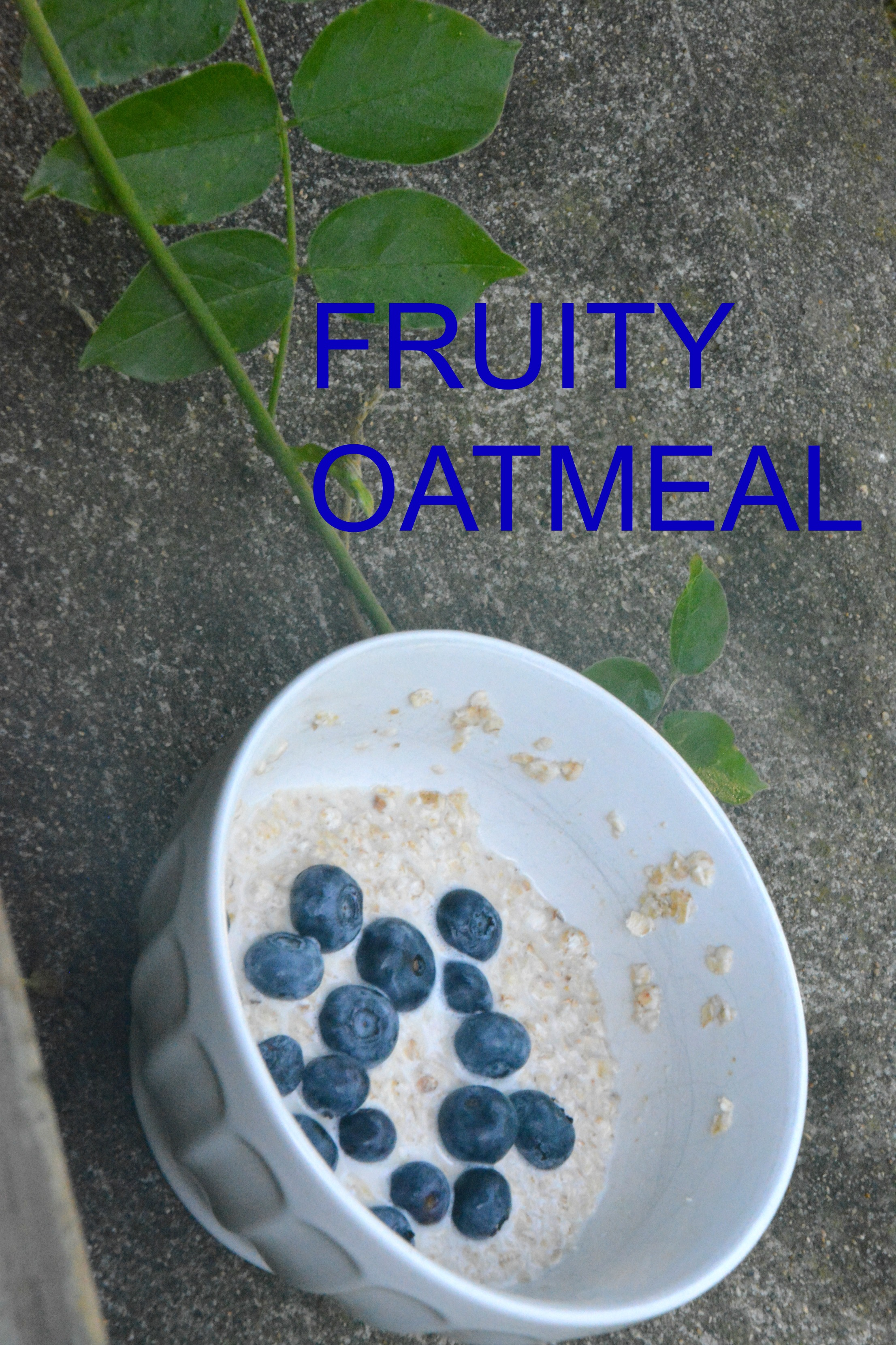 Fruity Oatmeal