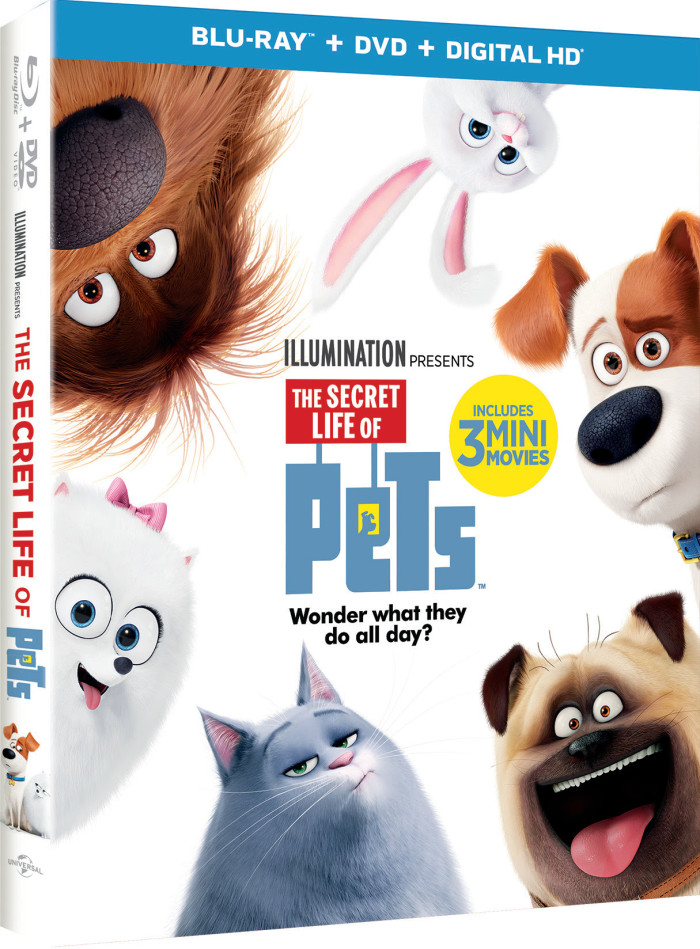 unnamed14 700x949 The Secret Life Of Pets Available on DVD December 6th!