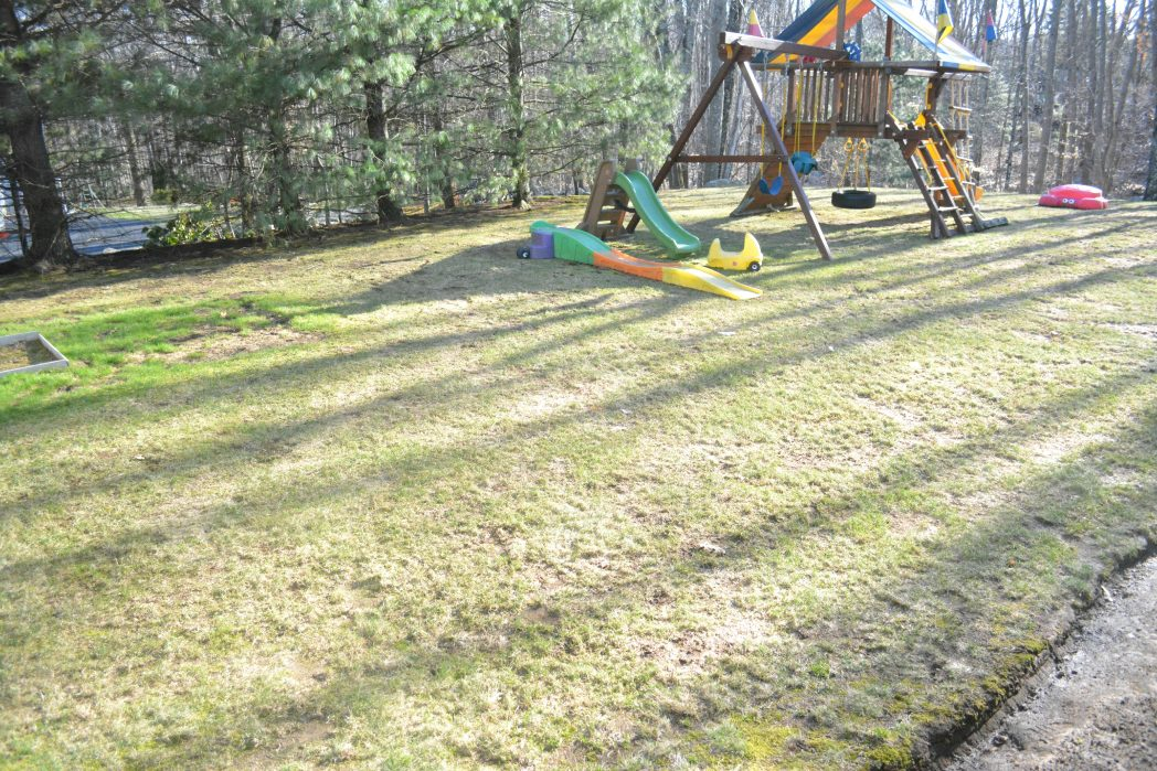 TruGreen- Getting Backyards Ready for the Spring! # ...