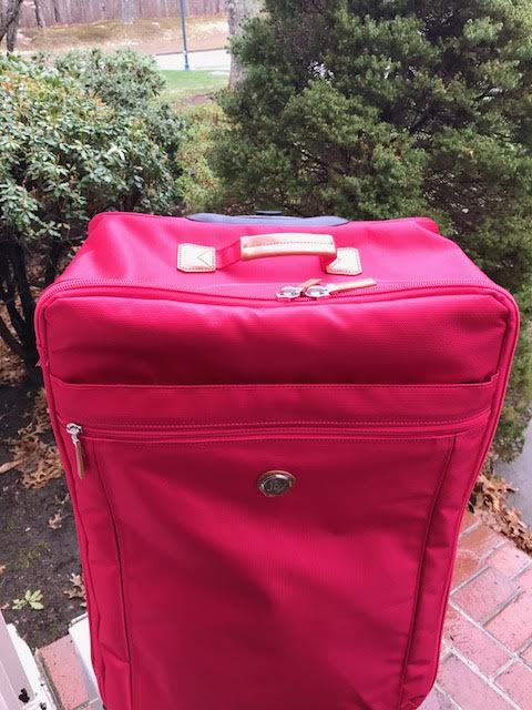 Joy Magnano luggage