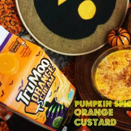 Pumpkin Spice Orange Custard Recipe!! Perfect for Halloween!