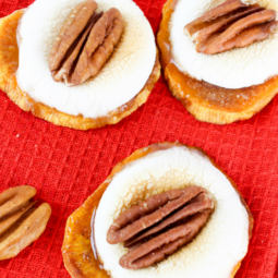 Candied Sweet Potato Bites Recipe!