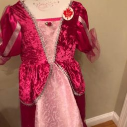 Great Pretenders Princess Dress Review + Giveaway!