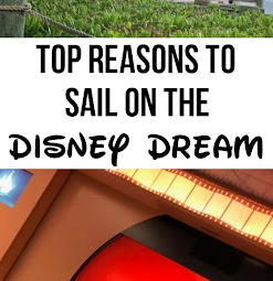 Top Reasons To Sail On The Disney Dream!