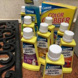 Carbona- Household Products to Remove those Pesky Stains!