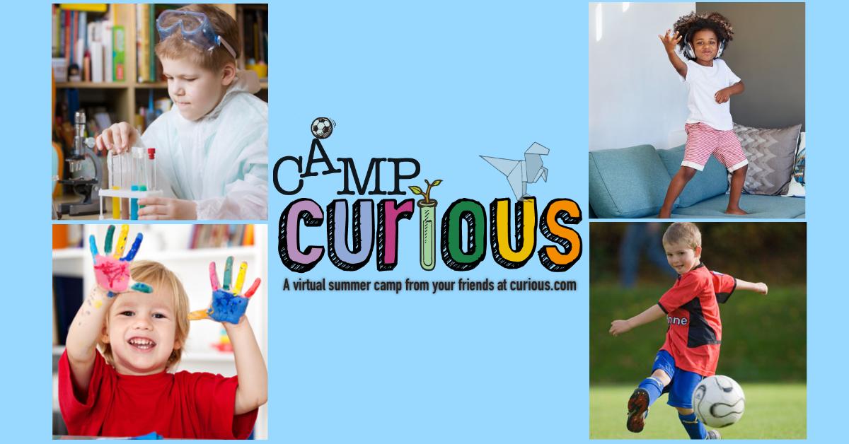 Virtual online summer camp