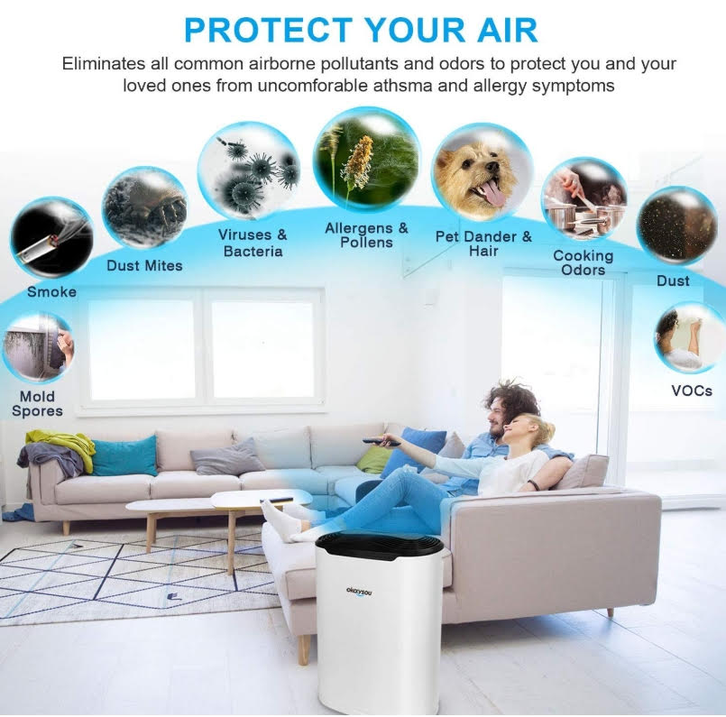 Okaysou Air Purifiers to the Rescue!